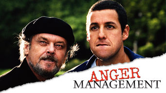 Is Anger Management 2003 On Netflix Costa Rica